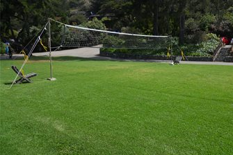 grass volleyball court