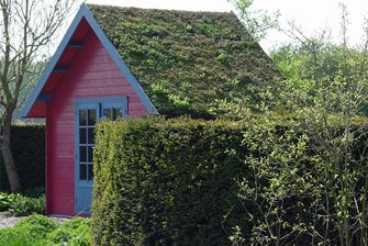 Bright paint and a planted green roof