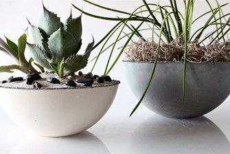 modern concrete bowl planter