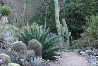 Botanical Garden at Berkeley