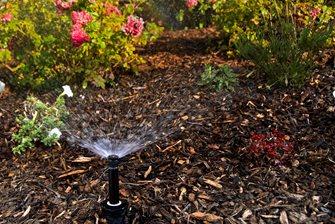 Plant Sprinkler, Shrub Sprinkler Landscaping Network Calimesa, CA
