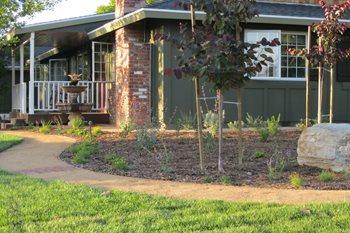Front Yard Landscaping Creations Landscape Design Tustin, CA