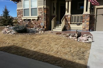 Front Yard Before Renovations Landscaping, Inc Castle Rock, CO