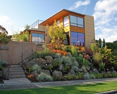 Front Yard Hillside Swimming Pool Banyon Tree Design Studio Seattle, WA