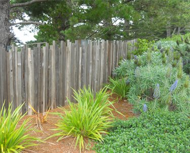 Fence, Wood Swimming Pool Landscaping Network Calimesa, CA