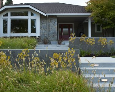 Front Yard Entrance Swimming Pool Shades of Green Landscape Architecture Sausalito, CA