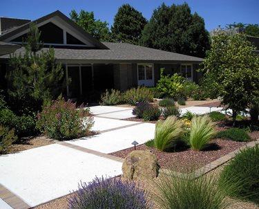 Front Yard Xeriscape Swimming Pool Red Twig Studio Albuquerque, NM