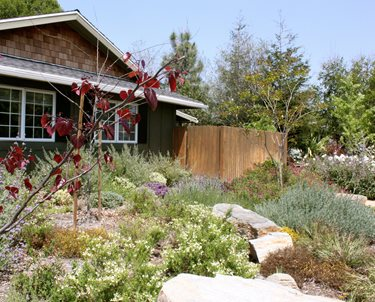 Natural, Garden, Rock Swimming Pool Landscaping Network Calimesa, CA