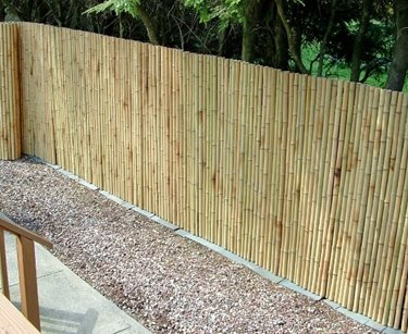 Bamboo, Fence, Roll Pergola and Patio Cover Bamboo Fencer Cambridge, MA
