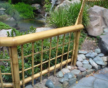 Low Bamboo Fence Pergola and Patio Cover Maureen Gilmer Morongo Valley, CA