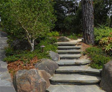 Steps and random stone