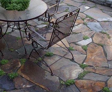 Brown Flagstone, Flagstone Patio Lifestyle Landscapes Seattle, WA