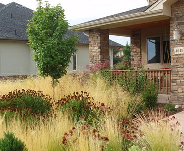 Front Yard Xeriscaping Grasses J&S Landscape Longmont, CO