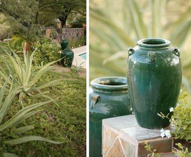Lush Xeriscape, Green Pottery Boxhill Landscape Design Tucson, AZ