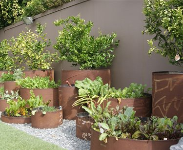 Steel pipe planters