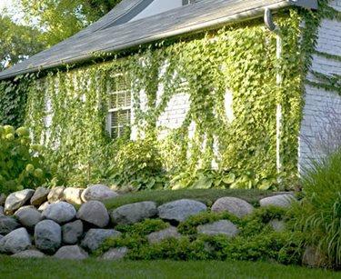 Stacked Stone Wall Romani Landscape Architecture Glencoe, IL