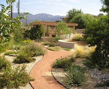 Backyard Xeriscape Garden, Pergola, Fireplace Swimming Pool Red Twig Studio Albuquerque, NM