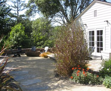 Lawnless Yard Swimming Pool Dig Your Garden Landscape Design San Anselmo, CA