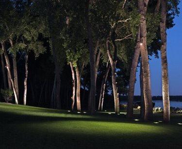 Trees, Lights Swimming Pool McKay Landscape Lighting Omaha, NE