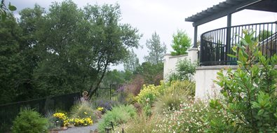 Hillside Plantings Northern California Landscaping Karen McGrath Design Redding, CA