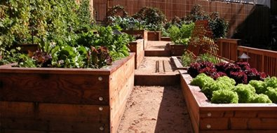 Raised Bed Gardens