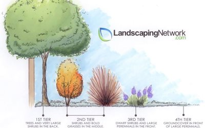 Plant Tiering Landscaping Network Calimesa, CA