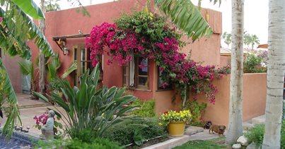 Mexican Garden Design