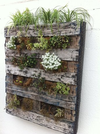 Recycled landscaping ideas landscaping network - Jardin vertical pallet ...