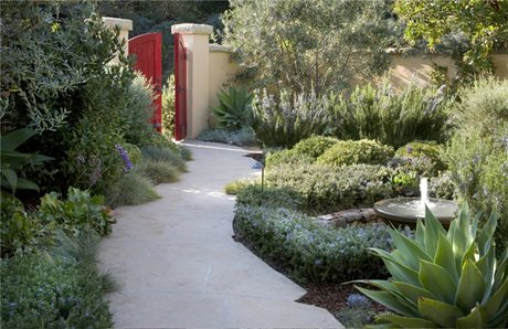 Low Maintenance Front Yard Plantings