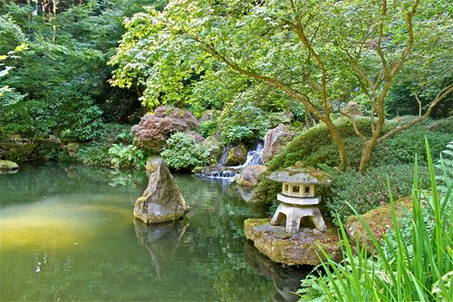 Japanese Landscaping Pictures