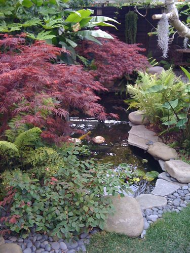 Japanese landscape design ideas landscaping network for Small japanese ponds