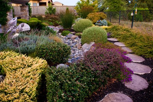 Roseville backyard garden landscaping network for Dry garden designs