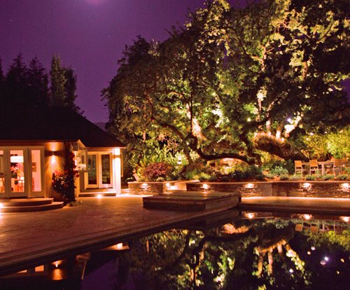 Landscape Lighting Ideas Trees : Landscape lighting landscaping network