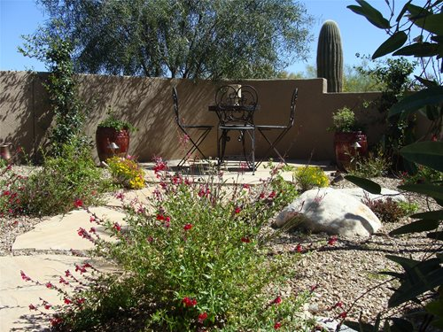 Desert Backyard Plans : arizona front yard was turned into a lush family garden
