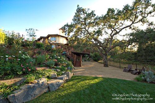 backyard landscape ideas southern california tropical front yard