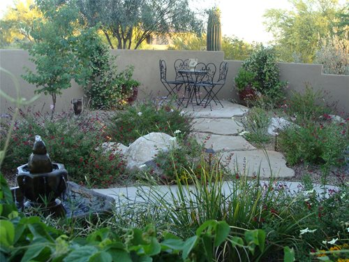 Desert Small Backyard : How a typical Arizona front yard was turned into a lush family garden