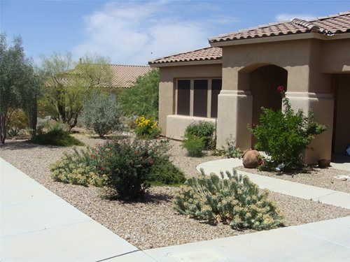 Colorful Desert Courtyard - Landscaping Network