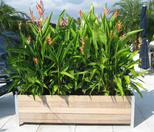 Rooftop balcony planters landscaping network for Balcony planters