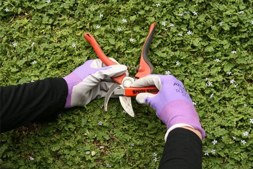 Top Tools Used by Gardening Pros - Landscaping Network