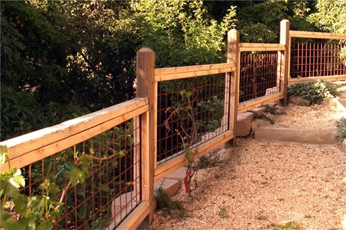 Garden Fencing Design Ideas - Landscaping Network