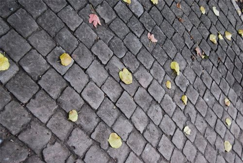 Cobblestone Paving Landscaping Network