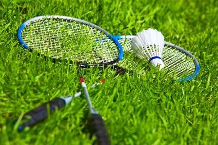 Backyard Badminton Court Landscaping Network