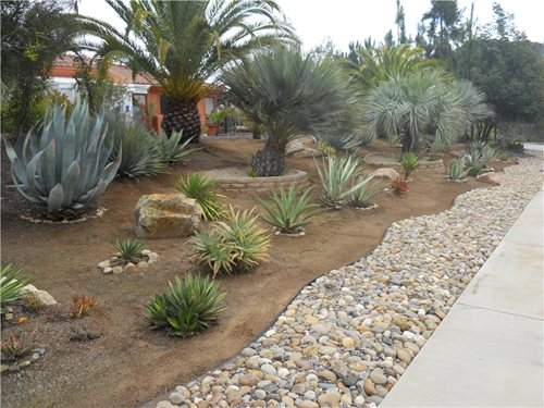 Driveway Border Landscaping Ideas