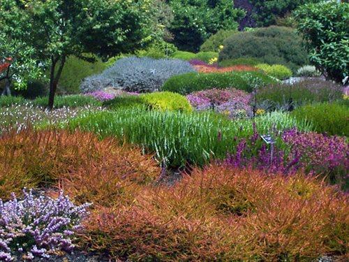 Front yard vegetable garden design - Visit The Mendocino Coast Botanical Gardens Landscaping Network