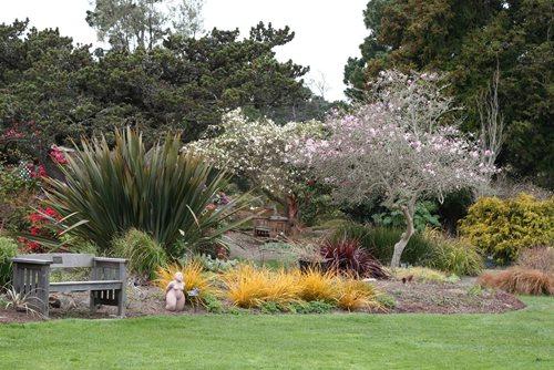 Visit The Mendocino Coast Botanical Gardens Landscaping