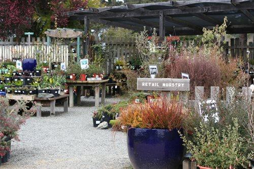 ... Mendocino Coast Botanical Gardens