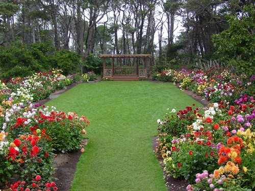 Visit The Mendocino Coast Botanical Gardens Landscaping