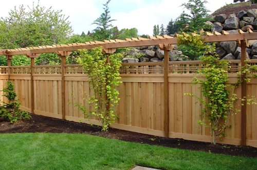Decorative Privacy Fence Ideas