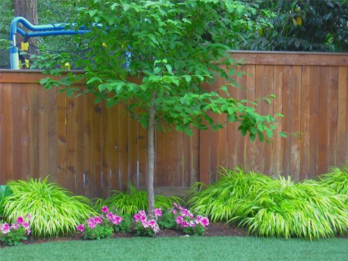Northwestern Shade Garden Landscaping Network