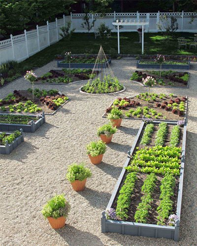 Backyard Kitchen Garden Design: Vegetable Garden Design Ideas
